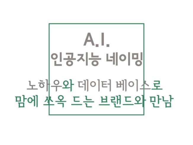 A.I. 네이밍 서비스, 인공지능처럼 노하우와 데이터베이스로 쏘옥 드는 네임 개발해 드립니다