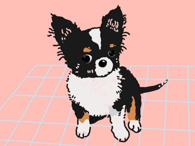 반려동물 프로필 일상 일러스트 삽화 그림 드립니다.