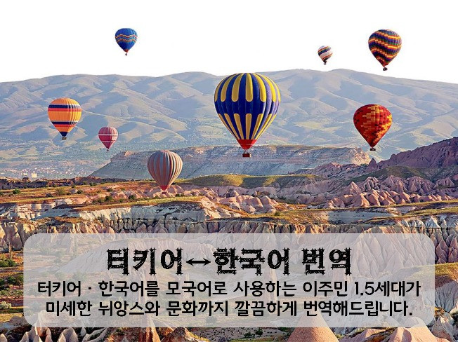 한국사람보다 한국말 더 잘하는 터키인이 무엇이든 깔끔하게!! 번역해 드립니다