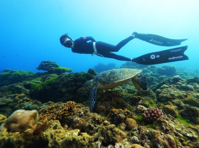 물속에서 찍는 인생샷! 프리다이빙 수업과 함께 물 속으로 안내 해 드립니다