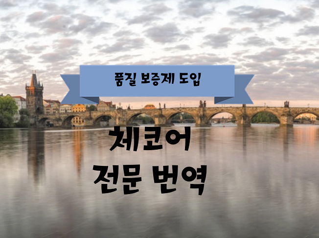 #체코어 전문 번역해 드립니다