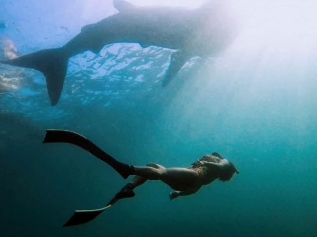 물 속에서 내 호흡에 집중하며 자유로워지는 기분을 느끼게해 드립니다.