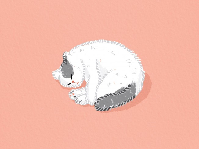 따뜻한 그림체로 동물캐릭터 일러스트를 그려 드립니다.