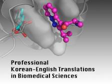 [미국 연구중심 의대 교수 출신] 의약학, 생명과학 분야 한영/영한 번역/수정해드립니다.