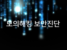 WEB/APP 모의해킹 보안진단 컨설팅해드립니다.