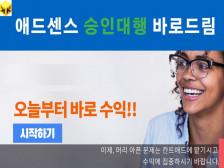애드센스 승인 대행, 바로드림 (블로그 추가,광고송출 바로 가능)을 4만원 할인가격에드립니다.