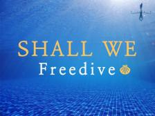[프리다이빙] 자유로운 물 속 여행을 떠나보는 즐거움을드립니다.