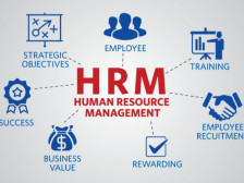 인사 제도 기획/운영/보고서 작성 전반 컨설팅 해드립니다.