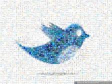 트위터 1,120,000 (112만) 노출 광고 발송해드립니다.