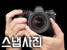 스냅 사진 (컨셉별) 촬영 해드립니다.