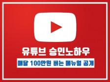 유튜브 수익승인나서 매달 100만원 이상 벌게만들어주는 실전메뉴얼드립니다.