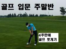 골프 입문반 4주만에 완성해드립니다.