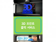 3D 프린트 출력 서비스 해드립니다.