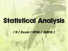 Excel, R, SPSS로 통계분석 해드립니다.