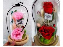 감성가득 캘리그라피글귀와함께 꽃선물드립니다.