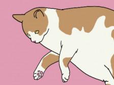 카툰풍 애완동물 그려드립니다.