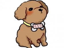 애완동물 애인 친구 연예인드립니다.