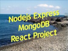 Nodejs 웹 서버 프로그램 개발해드립니다.