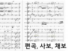 (편곡, 사보, 채보) 어떤 곡이든 원하는 악보를 만들어드립니다.