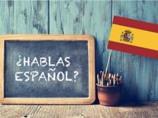 원어민이 스페인어 과외 해드립니다.