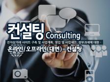 전자상거래,사업계획,제안서 컨설팅 하여드립니다.