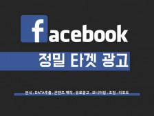 페이스북 마케팅 데이터 기반 정밀 타겟 설정해드립니다.