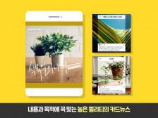 트렌디하고 깔끔한 SNS 카드뉴스/이벤트/홍보용 이미지 제작해드립니다.