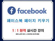 페이스북 페이지 키우는 노하우 강의드립니다.
