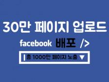 30만 페이스북 페이지 포스팅 & 합1000만 페이지 배포, 공유 진행해드립니다.