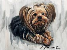 강아지 동물초상화 그려드립니다.