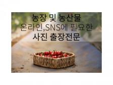 온라인 SNS판매를 위한 농장및농산물 촬영해드립니다.