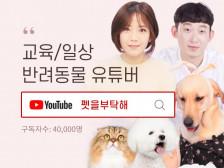 4만명 구독자 유튜브 채널에 귀사의 제품을 홍보해드립니다.