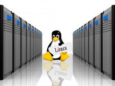 리눅스 서버 구축&유지보수 해드립니다.