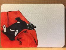 마카와 캘리그라피로 반려동물 엽서 제작해드립니다.