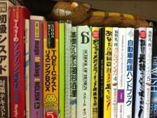 일본어 전문번역 해드립니다.