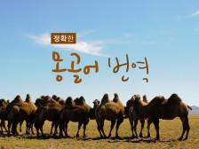 몽골어 번역 정확히 해드립니다.