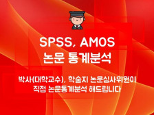 SPSS/AMOS/논문통계분석/기초부터 고급통계분석까지 박사 전문가 직접 분석해드립니다.