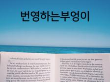 영어 번역(영어  한글, 전문 저널/기사/수필/에세이/논문 등) 깔끔하고 신속하게 해드립니다.