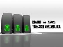 웹 서버 와 관련된 유지보수(서버 구축/서버 이전/AWS ) 해드립니다.