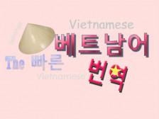 [9년 경력] 원어민+ 한국인 전문 번역가가 하이퀄리티의 베트남어 / 한국어 번역을드립니다.