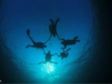 스킨스쿠버/스쿠버다이빙 체험다이빙 시켜드립니다.