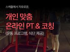 온라인 PT(맞춤형 다이어트, 운동 프로그램, 코칭 해드립니다.