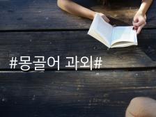 연세대학교 박사 출신의 몽골어 과외 해드립니다.