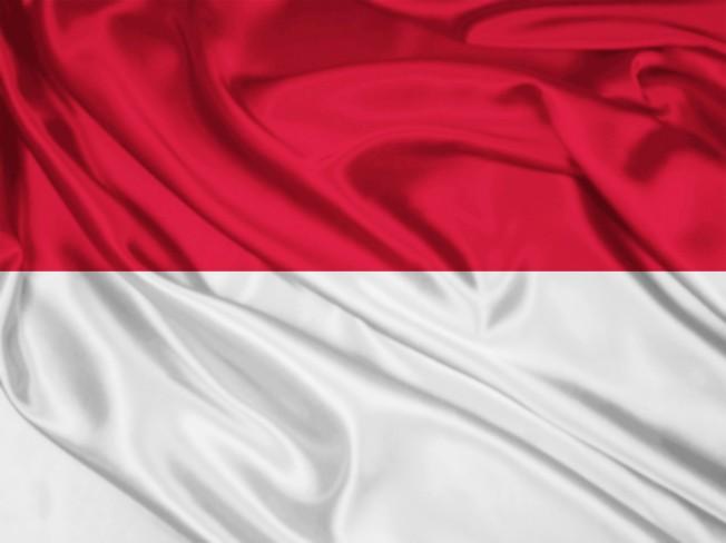인도네시아어 번역 원어민 감수 포함하여 전문적으로 번역해 드립니다