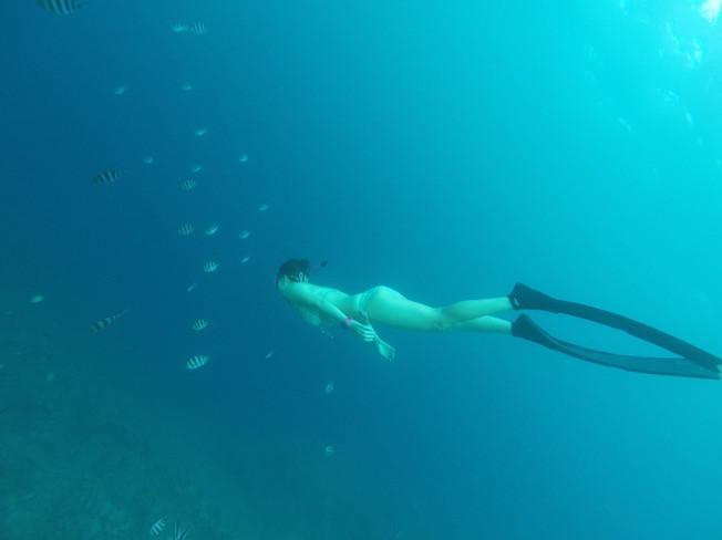 [서울] 당신이 지금까지 몰랐던 또다른 능력!!  프리다이빙의 세계로 안내해 드립니다