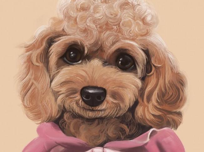 현직 동화 작가의 귀여운 반려동물 캐리커쳐 jpg 그려 드립니다.