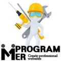 Programmer2005